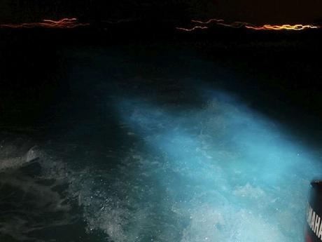 Glistening Waters -night