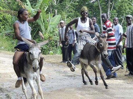 DonkeyRacingA20110802IA