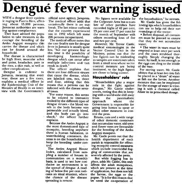 Dengue 1994