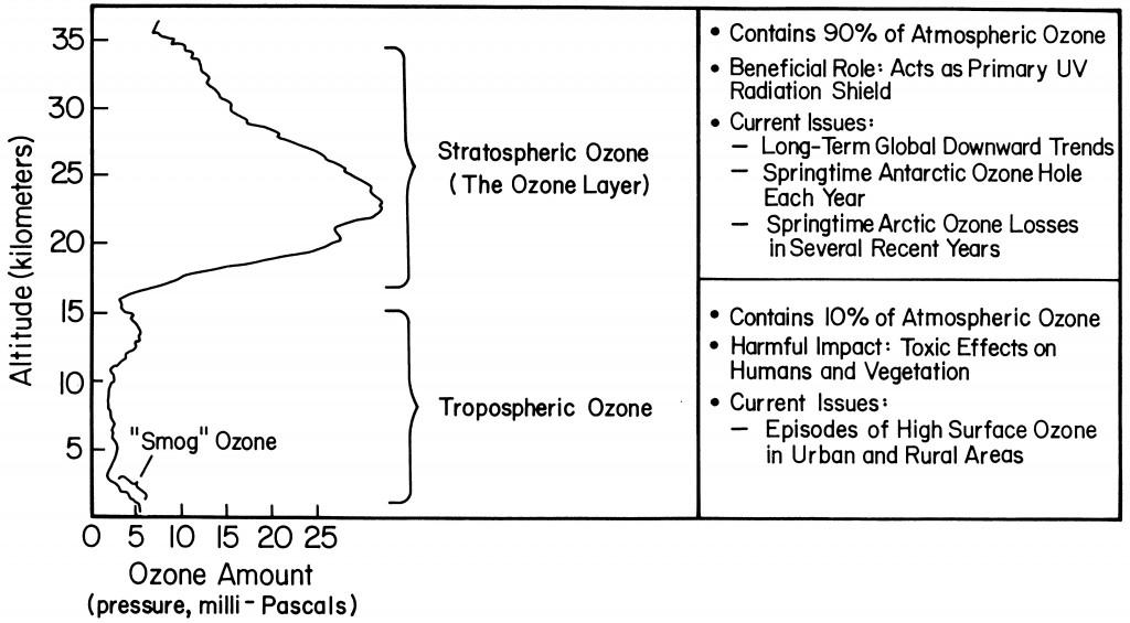 OzoneFig3